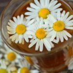kwiaty rumianku zanurzone w szklance z ciepłym naparem