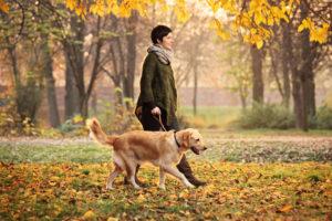 spacer z psem na świeżym powietrzu pomoże na wzdęcia